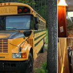 Bluebird Bus Turned Into Cozy Mobile Home Design Garden