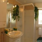 Mobil Homes Small Houses Picked And