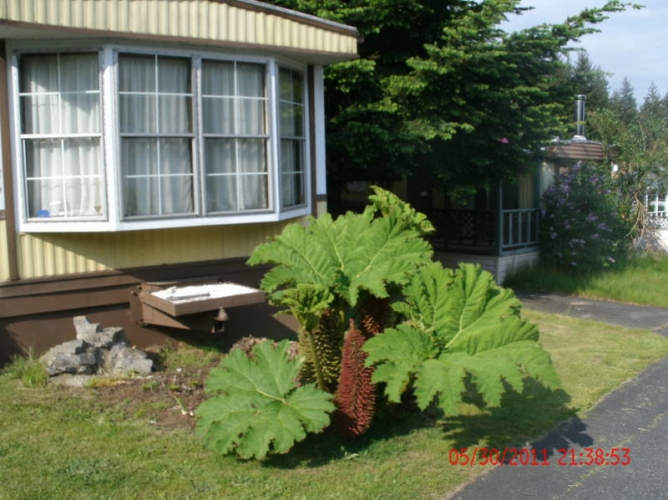 Mobile Homes For Sale Nanoose Bay British Columbia And