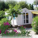 Mobile Homes Leisure And Park Lodge For Sale