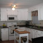 Single Wide Mobile Homes Ontario And Apartments
