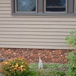 The Mobile Home Skirting Guide And Manufactured Living