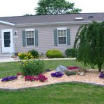 What Middle Front Lawn Flower Landscaping Growing