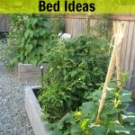 Frugal Gardening Four Inexpensive Raised Bed