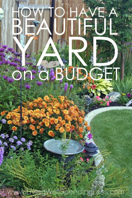 Have Beautiful Yard