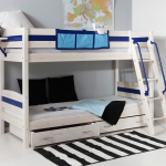 Lively Colorful Boys Room Space Saving Bunk Bed
